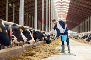 Alberta Self-Employed Farmers Program